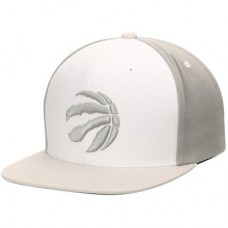 Toronto Raptors - Current Logo White Wall Snapback Adjustable NBA Čiapka