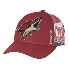 Arizona Coyotes - Stanley Cup Playoffs LD NHL Čiapka