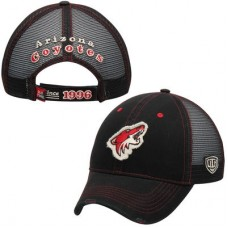 Arizona Coyotes - Sanford NHL Čiapka