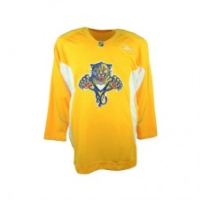 Florida Panthers - Practice V NHL Jersey