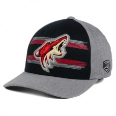 Arizona Coyotes - Silverscreen LD NHL Čiapka