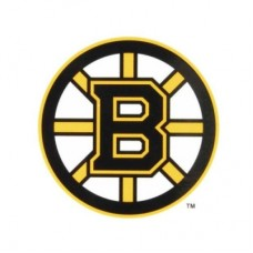 Boston Bruins - Static NHL nálepka
