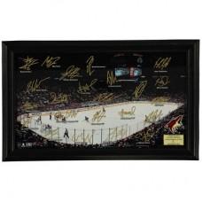 Arizona Coyotes - 2016 Signature Rink Panoramatic NHL Fotka