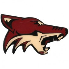 Arizona Coyotes - Team Logo NHL Odznak
