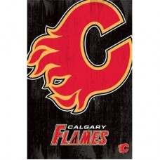 Calgary Flames -Team Logo TS NHL Plagát