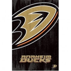 Anaheim Ducks -Team Logo TS NHL Plagát