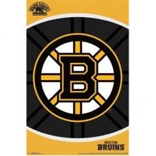 Boston Bruins -Team Logo TS NHL Plagát